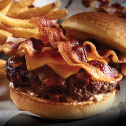 All In Triple Bacon Burger